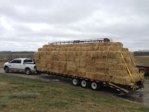 Straw Delivey